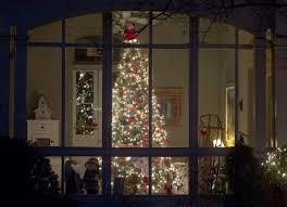 Cutz  Die  Christmas Tree In Window ElitesChristmas Tree In Window