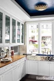 Kitchen Ceilings Painted Kitchen Ceiling Ideas Roselawnlutheran