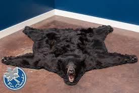 black bear 02 black bear skin rugs