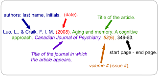 news article format apa reference format for online news article