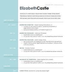 Free Resume Download Blue Side Microsoft Word Format
