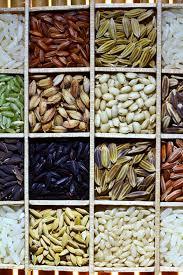 Diete simple si eficiente, wikipedia