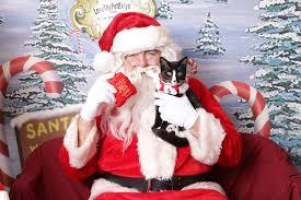 「サンタクロース 画像 フリー」の画像検索結果