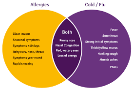 The Difference Between the Flu and Allergies | Posts by Simon Hopes ...