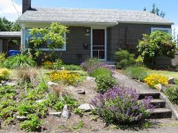 Low Maintenance Plants And Flowers For Front Yard Landscaping Rustic Modern  House Design With Sloping Garden