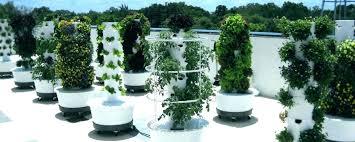 hydroponic grow tower hydroponics garden tower hydroponic tower garden tower garden photo 8 of 8 what