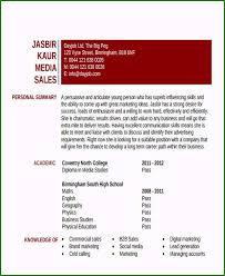 Entry Level Digital Marketing Resume Samples Remarkable 48