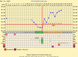 Pregnancy Day By Day Chart
