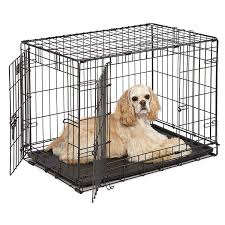 Midwest Icrate Size Breed Chart Midwest Icrate Double Door Folding Metal Dog Crate Amazon