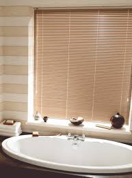 blinds for bathrooms. When Choosing Blinds For The Bathroom, All We Have To Do Is Think A Bit Logically, And Answer Makes Itself Apparent. Bathrooms N