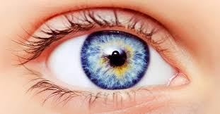 ask well fish oil supplements for dry eye