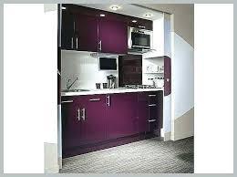 Cuisine Equipee Violet