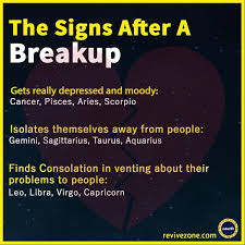 Zodiac Signs After Breakup Aries Taurus Gemini Cancer Leo Extraordinary Scorpio Break Up Quote
