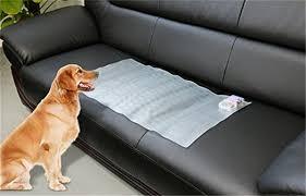 Shock Mat Dummy Mat To Keep Pets f Furniture Buy Dummy Mat