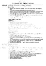 Consulting Resumes Examples Energy Consultant Resume Samples Velvet Jobs 32