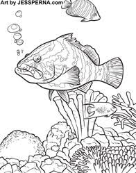 Small Picture a sawfish a tropical fish the lionfish coloring page swordfish is