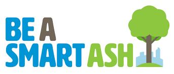 Be a Smart Ash