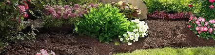 garden mulch. Contemporary Garden Mulch Soil U0026 Garden Throughout Mulch