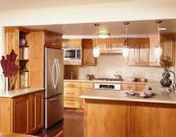 small kitchen refrigerator. Small Kitchens With Islands Designs Modern Doors Refrigerator Kitchen Cabinet Ideas Apartment Furniture Decoration Home Design