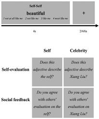 Trait Self Esteem And Neural Activities Related To Self Evaluation