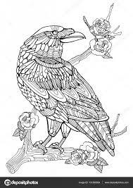 カラス鳥ベクトルの大人のための塗り絵 ストックベクター