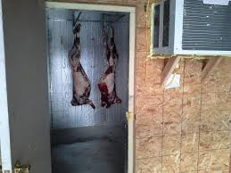 meat curing