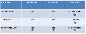 Ancestry Dna Test Comparison Chart Dna Test Report Card For Genetic Genealogy Tests