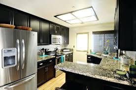 Kitchen fluorescent lighting ideas Recessed Lighting Kitchen Fluorescent Lighting Contemporary Kitchen Elegant Fluorescent Lighting Ideas Make Kitchen Fluorescent Lighting Ideas Kitchen Fluorescent Lighting Kitchen Ceiling Light Fixtures Amazon