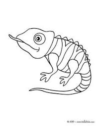 Small Picture Creative Cuties Iguana Coloring page COLORING CUTIES Coloring
