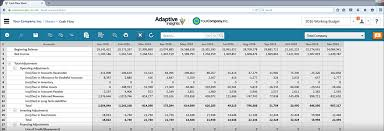 Cash Flow Sheets Cash Flow Forecasting Management Software Balance Sheet