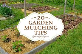 best mulch for garden.  For Mulching Is One Of The Best Things You Can Do For Your Garden A Generous For Best Mulch Garden E