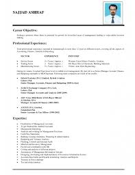 Objective On A Resume Examples Cover Letter Career Objective Resume Example With Professional 45