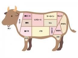 牛肉の部位のイラスト | イラスト無料・かわいいテンプレート