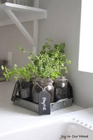 Vertical Herb Garden In Your Kitchen 17 Best Ideas About Mason Jar Herbs On Pinterest Mason Jar