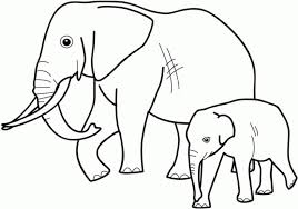 Small Picture Elephants 2 coloring page