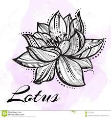 цветок лотоса вектора высоко детальный красивый татуировка йога