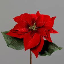 Samt Weihnachtsstern 28x22cm Rot Dp Kunstblumen Künstliche Blumen Poinsettie