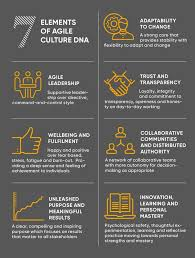 7 Elements Of Culture 7 Elements Of Agile Culture From The Agile Business