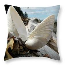 Small Picture Marooned Throw Pillow by Micki Findlay TheSingingPhotographer