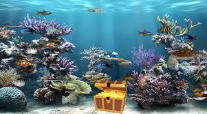 Clear Aquarium Animated Wallpaper Desktopanimated Com
