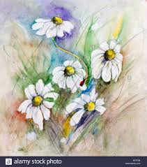 small red ladybug on daisies flowers watercolor handmade painting ilration