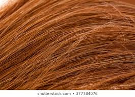 Hair Color Chart Shades Images Stock Photos Vectors