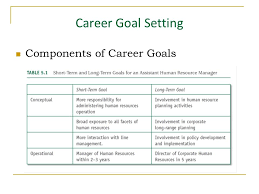 What Is A Career Goal Career Goal Setting Components Of Career Goals Inability To