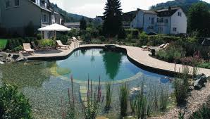 Swimming Pool:Beautiful Natural Home Swimming Pool Designs With Natural  Stone Waterfall Natural Swimming Ponds