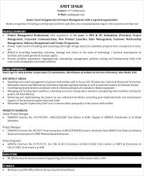 49+ Professional Manager Resumes - Pdf, Doc   Free & Premium Templates