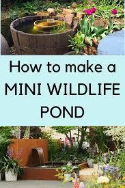 how to make a mini wildlife pond the