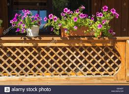 Balcony Fence fragment of wooden balcony fence with scenic flowerbed by 1850 by xevi.us