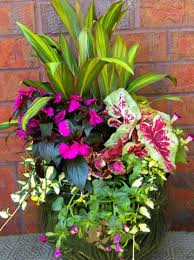 Small Picture Colorful Shade Container Garden Favorite Places Spaces garden