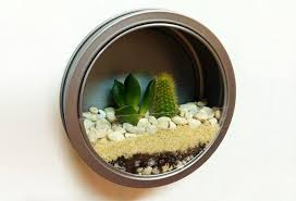 magnetic wall terrarium diy earth day diy earth day do it yourself