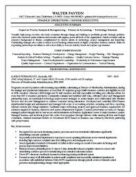 Summary Examples For Resume Resume Summary Summary Section Of Resume ...